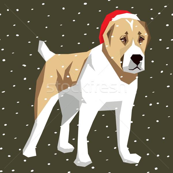 Vettore cani raccolta poligono cane Natale Foto d'archivio © leedsn