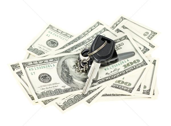 USA Dollars Stock photo © leedsn