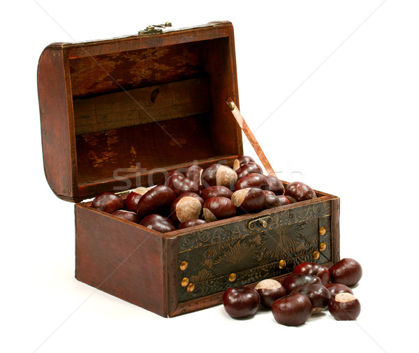 Chest With Chestnut Stock photo © leedsn