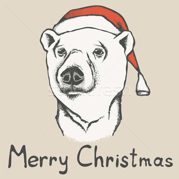 Orso polare Natale Hat illustrazione natura Foto d'archivio © leedsn