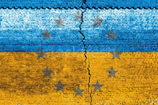 Oekraïne vlag gebarsten muur mensen staking Stockfoto © leedsn