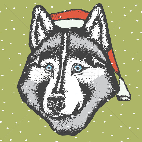 Vector husky perro Navidad sombrero Foto stock © leedsn