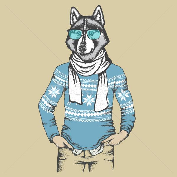 Сток-фото: Husky · человека · вектора · собака · стороны