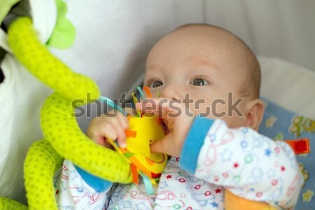 cute baby with toys Stock photo © leedsn