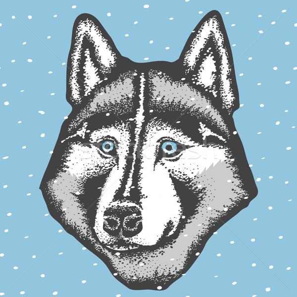 ベクトル ハスキー 犬 手 描画 幸せ ストックフォト © leedsn