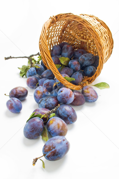 Plums and a wicker basket Stock photo © Leftleg