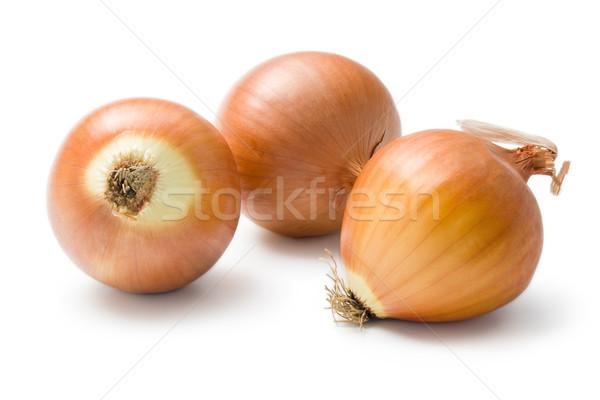 Onion Stock photo © Leftleg