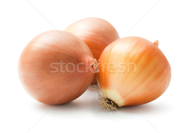 Onion Stock photo © Leftleg