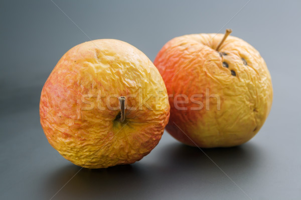 Two old apples Stock photo © Leftleg