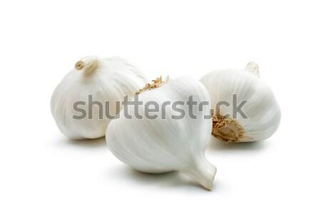 Fokhagyma három szegfűszeg fehér közelkép növény Stock fotó © Leftleg