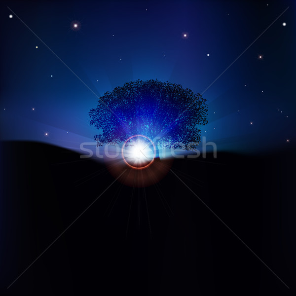 abstract Nature background with sunrise Stock photo © lem