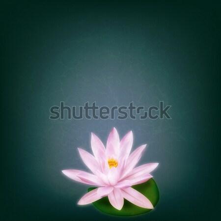 аннотация Гранж цветочный Lotus розовый лист Сток-фото © lem