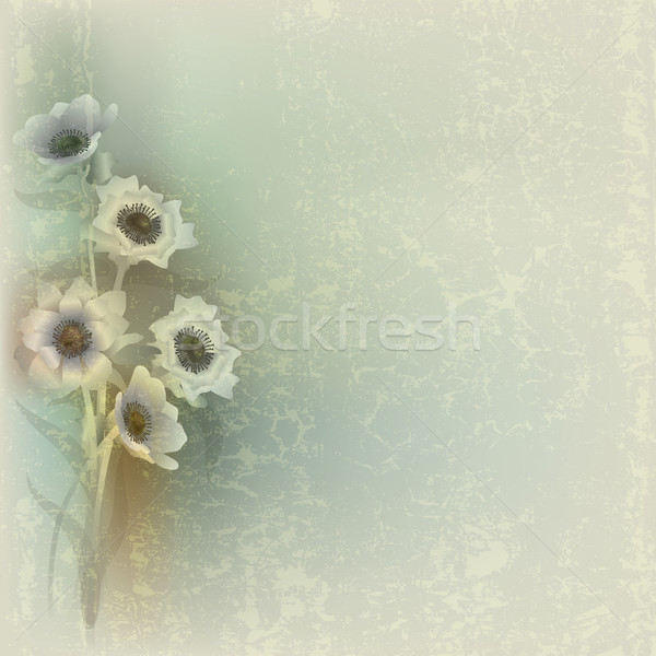 abstract grunge illustration with flowers Stock photo © lem