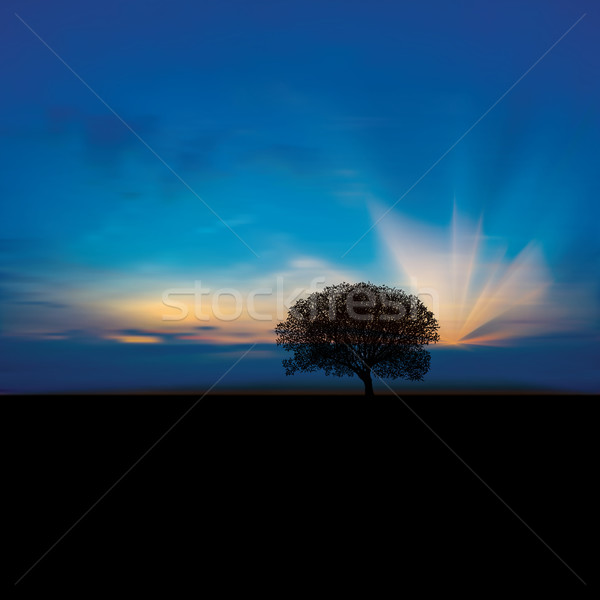abstract background with clouds and sunrise Stock photo © lem
