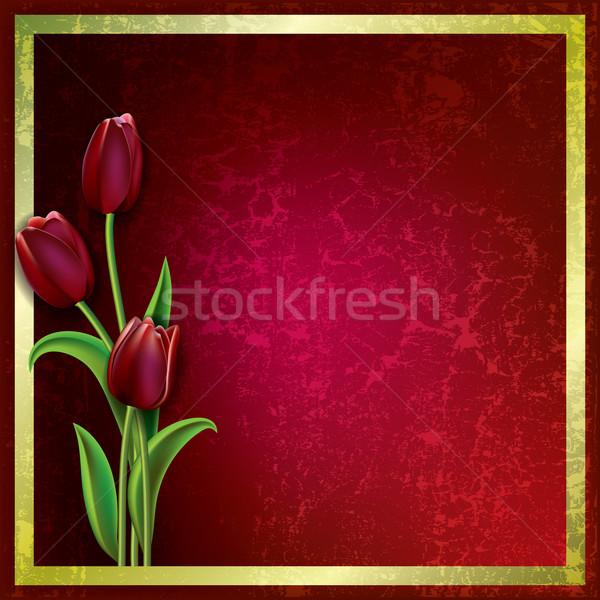 Stock foto: Abstrakten · Grunge · Tulpen · floral · rot · Natur