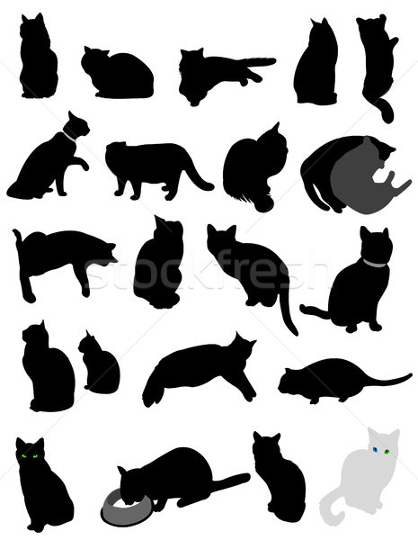 силуэта кошек кошки черный спать еды Сток-фото © lemony