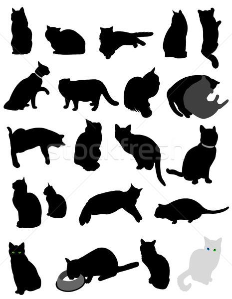 silhouette cats Stock photo © lemony