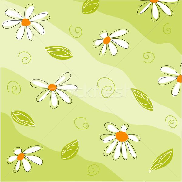Wenskaart bloemen meisje mode abstract Stockfoto © lemony