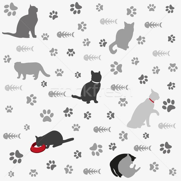 Katten poot print vis bot papier Stockfoto © lemony