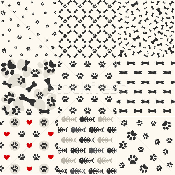Set of patterns with paw footprints and bones Stock photo © lemony
