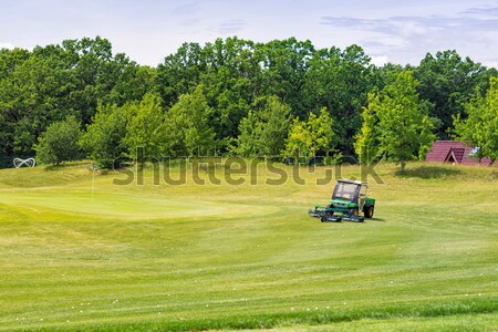 Perfect wavy green ground on a golf course Stock photo © Len44ik