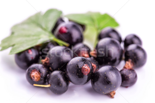 Fresh ripe blackcurrants isolated Stock photo © Len44ik