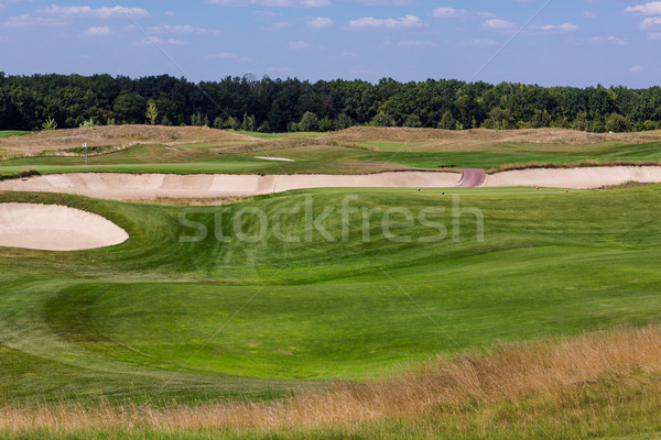 Perfect golvend groene grond golfbaan mooie Stockfoto © Len44ik