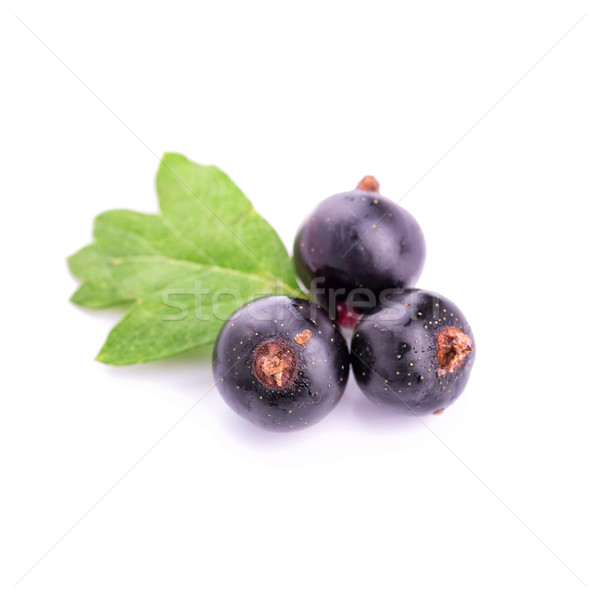 Fresh ripe blackcurrants isolated Stock photo © Len44ik