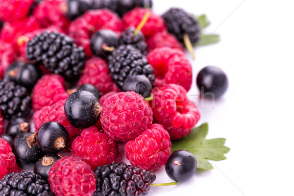 Fresh berries: raspberries, blackcurrants, mulberries Stock photo © Len44ik