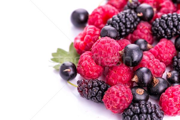 Fresh berries: raspberries, blackcurrants Stock photo © Len44ik