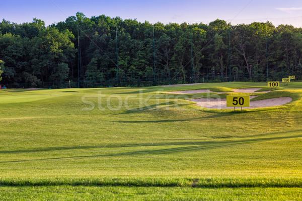 Stok fotoğraf: Mükemmel · dalgalı · zemin · yeşil · ot · golf · alan