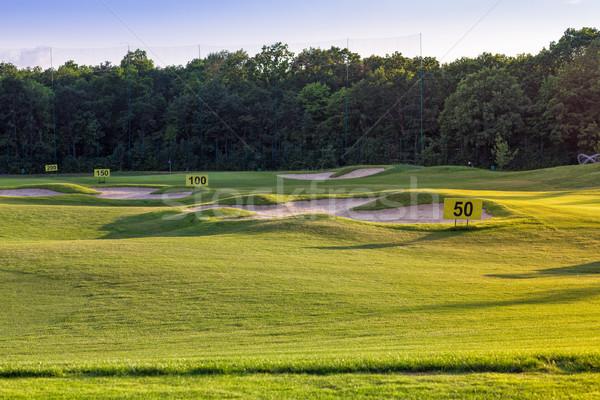 Stok fotoğraf: Mükemmel · dalgalı · çim · golf · alan · zemin