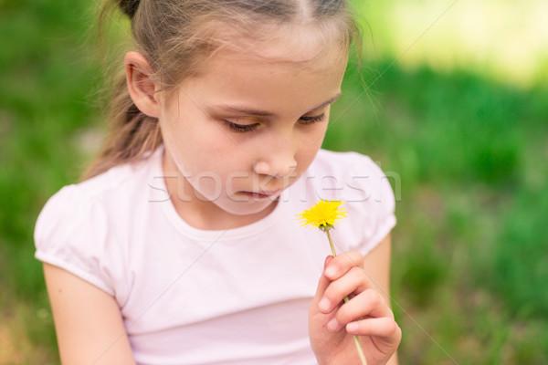 Stockfoto: Mooie · kind · paardebloem · bloem · meisje · outdoor