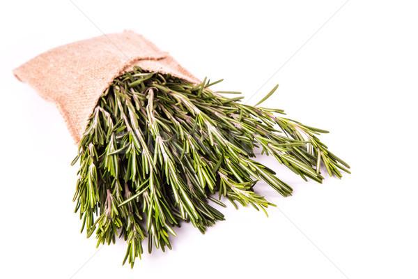 Rozmaring gyógynövények fűszer izolált fehér orvosi Stock fotó © Len44ik