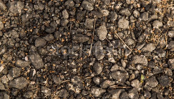 Soil background Stock photo © Len44ik