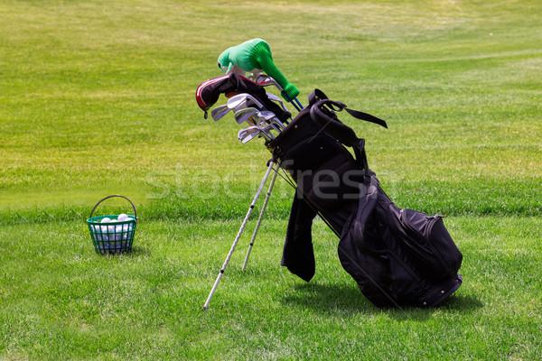 Profissional golfe equipamento campo de golfe carrinho Foto stock © Len44ik