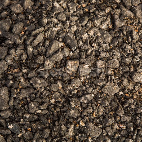 Bodem textuur ontwerp vloer modder grond Stockfoto © Len44ik