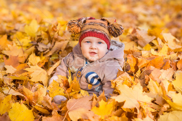 Aranyos baba ősz első gyerekek természet Stock fotó © Len44ik