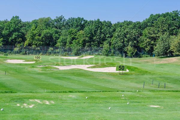 Mükemmel dalgalı yeşil zemin golf sahası güzel Stok fotoğraf © Len44ik