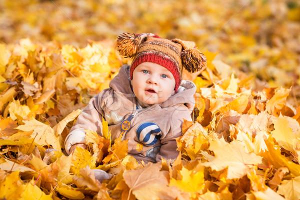 Stock fotó: Aranyos · baba · őszi · levelek · első · ősz · gyerekek