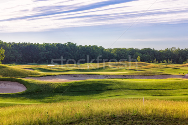 parfait ondul s sol herbe verte golf domaine photo stock olena afanasova. Black Bedroom Furniture Sets. Home Design Ideas