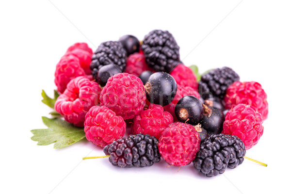 Fresh berries: raspberries, blackcurrants, mulberries Stock photo © Len44ik