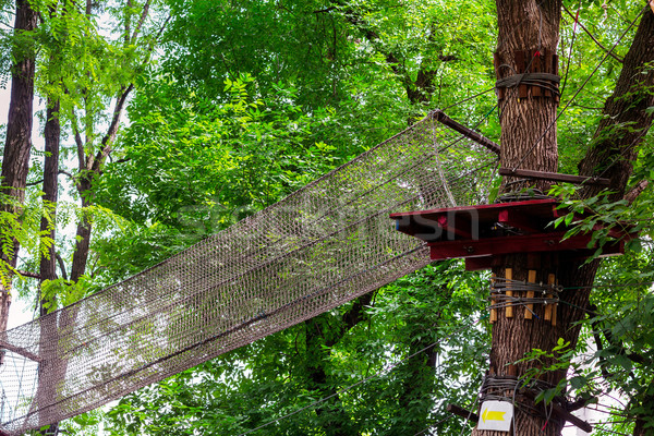 Adventure climbing high wire park Stock photo © Len44ik
