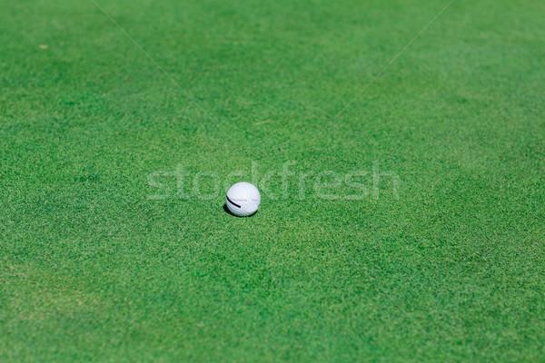 Stok fotoğraf: Golf · topu · yeşil · alan · mükemmel · dalgalı · zemin