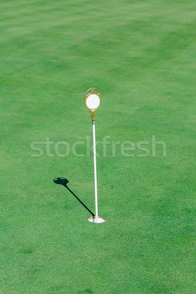 идеальный волнистый зеленый землю гольф флаг Сток-фото © Len44ik
