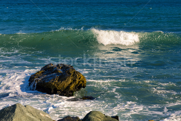 Sea, big wave and splashes over the stones Stock photo © Len44ik