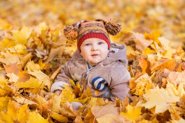 Cute Baby Herbstlaub erste Herbst Kinder Stock foto © Len44ik