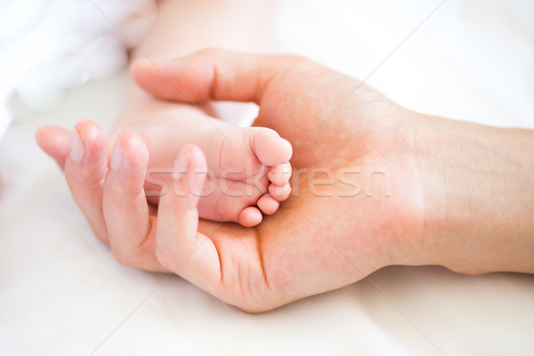 Father holding the foot of his new born son Stock photo © Len44ik