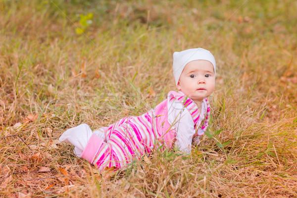 Aranyos kislány őszi levelek első ősz gyerekek Stock fotó © Len44ik