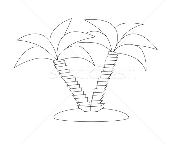 Palm trees, vector illustration Stock photo © Len44ik